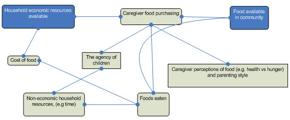 Figure 1 Household Setting Complex System Model Showing Influences on Children's Nutrition, Identified Through the Literature Review